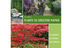 Plante cu crestere rapida- in gradina , pe terasa sau balcon