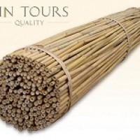 Araci bambus 150 cm/ 14-16 mm