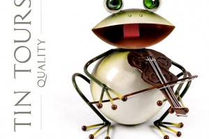Broscoiul violonist