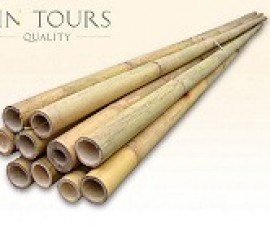 Bambus decorativ 300 cm/ 4-4.5 cm