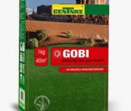 GAZON  DE SECETA GOBI(sac 5 kg)